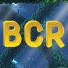 BCR探索海洋