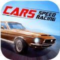 ARS赛车竞速