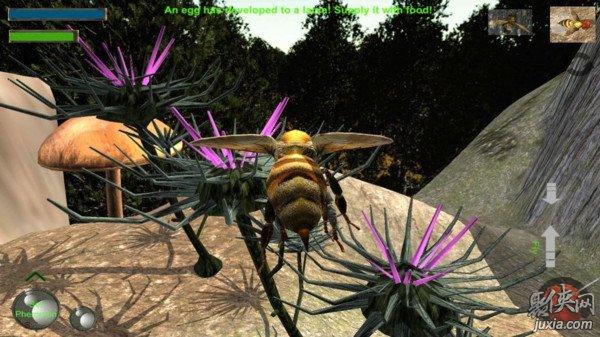 蜂巢模拟器3D