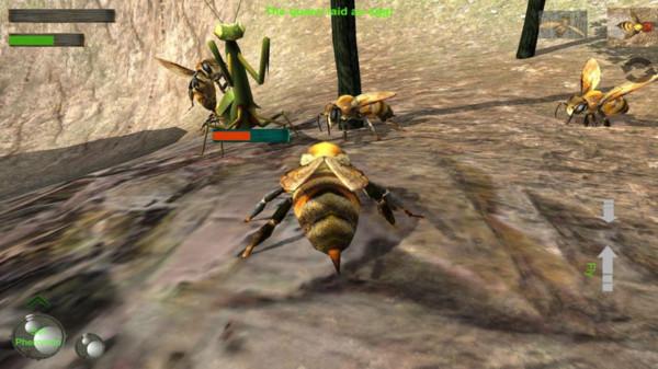 蜂巢模拟器3D截图