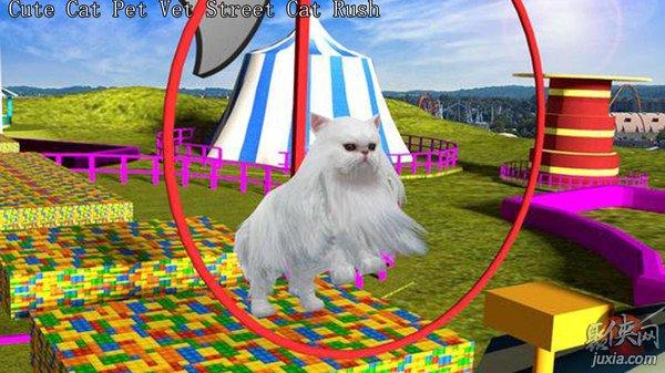可爱的小猫3d