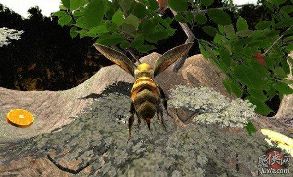 蜜蜂生存模拟器