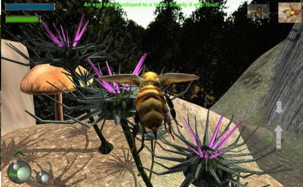 蜜蜂生存模拟器截图