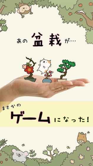 猫咪盆栽截图