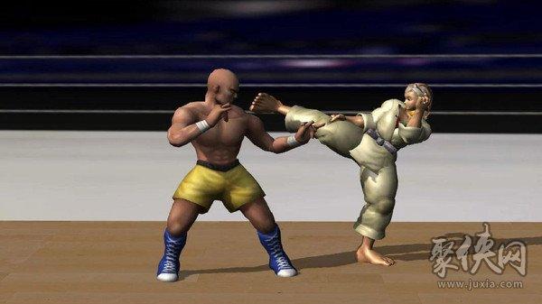 空手道拳击冠军