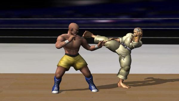 空手道拳击冠军截图