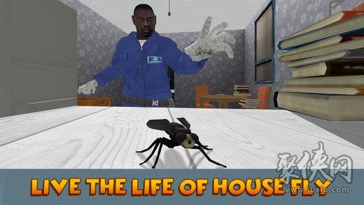 昆虫飞行模拟器3d