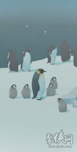 企鹅饲养员