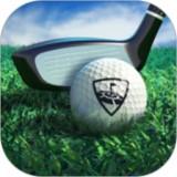WGT高爾夫