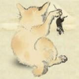 猫咪地盘之战