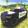 城市警车司机