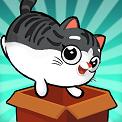 盒子里的猫2