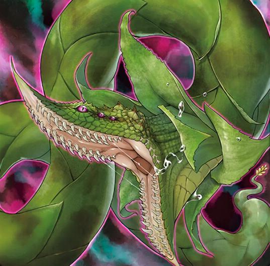 游戏王捕食植物 青锁龙森蚺怎么用 捕食植物 青锁龙森蚺效果是什么