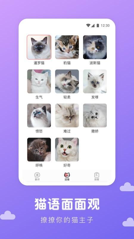 猫语翻译君截图