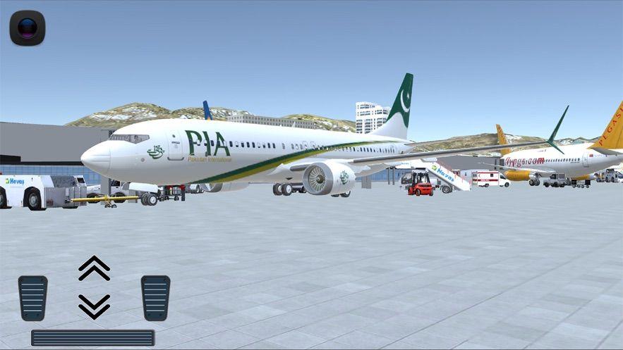Flight 737截图
