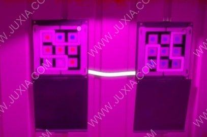 见证者攻略第十三关大厅怎么过 TheWitness大厅打开方法
