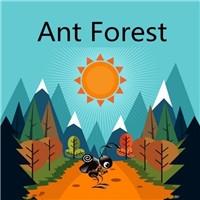 蚂蚁森林区块链