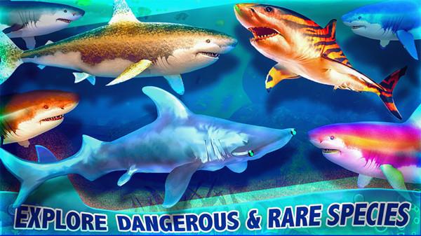 海底鲨海截图