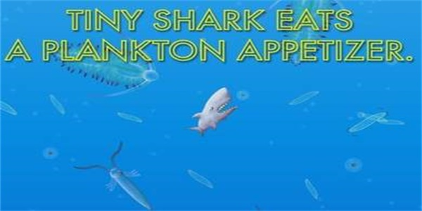 小金鱼进化史2截图