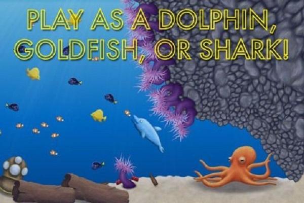 小金鱼进化史2