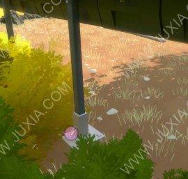 见证者花园当中的录音在哪里 TheWitness录音方位全解析