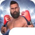 MMA格斗冲突