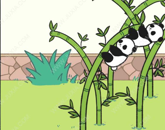 熊猫永不为奴15关攻略 熊猫永不为奴15游戏攻略