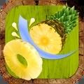 水果搅拌器