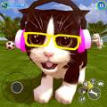虚拟猫模拟器
