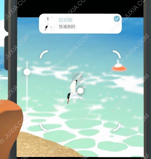 Alba攻略海滩动物全收集图文 阿尔芭与野生动物的故事攻略最全海滩动物位置详解