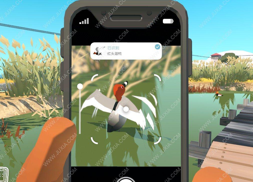 Alba攻略最全沼泽地动物位置全收集详解 阿尔芭与野生动物的故事攻略最详细沼泽地动物全收集图文
