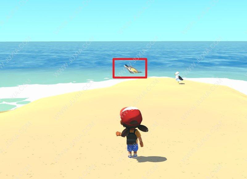 Alba攻略海豚在哪里 阿尔芭与野生动物的故事攻略海豚怎么找