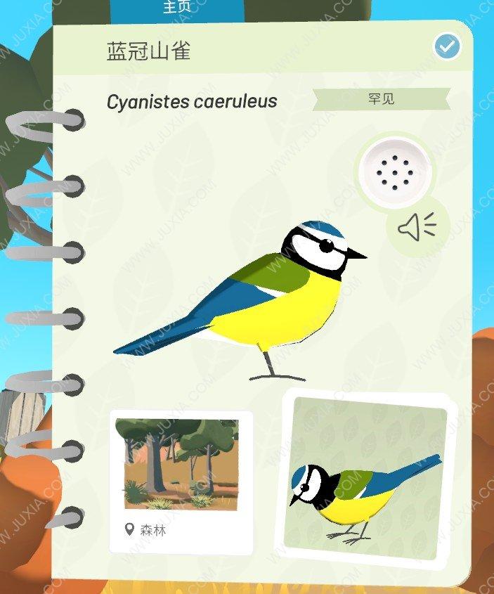 Alba攻略蓝冠山雀在哪里 阿尔芭与野生动物的故事攻略蓝冠山雀位置在哪里