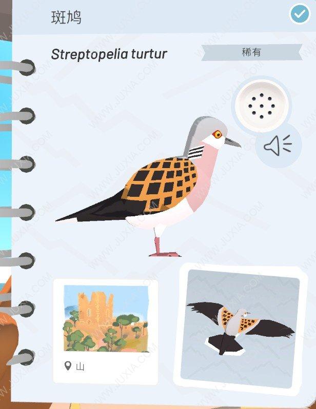 Alba攻略斑鸠怎么找 阿尔芭与野生动物的故事攻略斑鸠位置全详解
