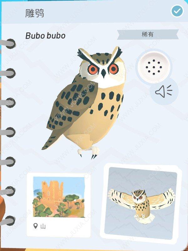 Alba攻略雕鸮怎么找 阿尔芭与野生动物的故事攻略雕鸮全位置详解