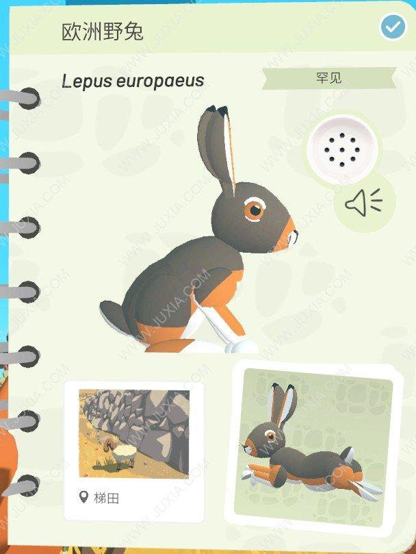 Alba攻略欧洲野兔怎么找  阿尔芭与野生动物的故事攻略欧洲野兔位置详解