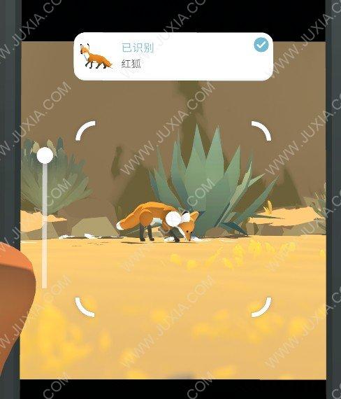 Alba攻略红狐怎么找  阿尔芭与野生动物的故事攻略红狐位置在哪里