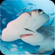 锤头鲨模拟器