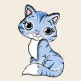 Catcoin猫猫币
