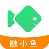 融小鱼贷款