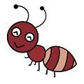 蚂蚁矿工APP以太坊
