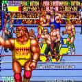 世界专业摔角