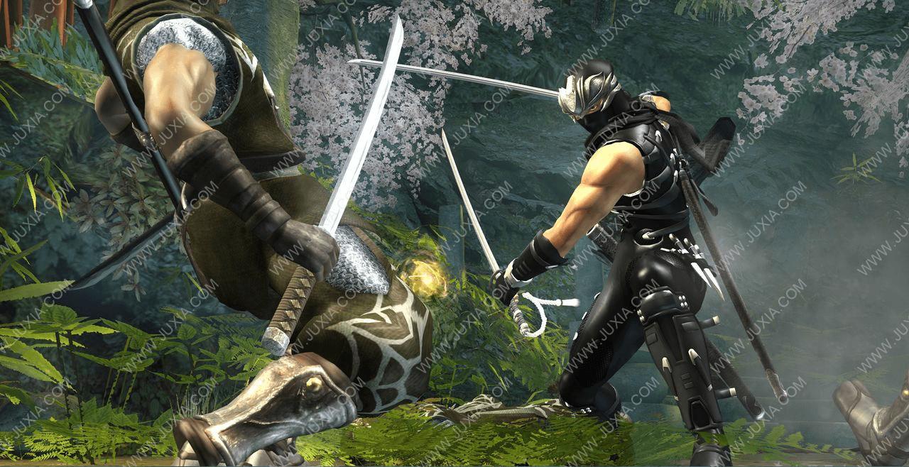 安利解惑向 来玩玩大人的游戏忍者龙剑传2吧