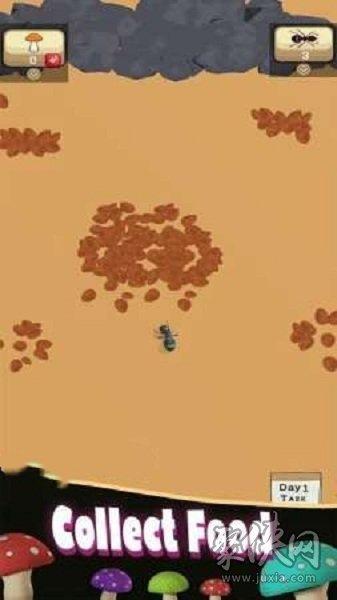 蚁丘的殖民地