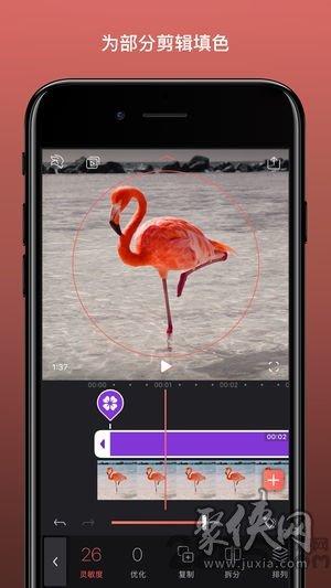 Videoleapapp