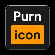 Purnicon