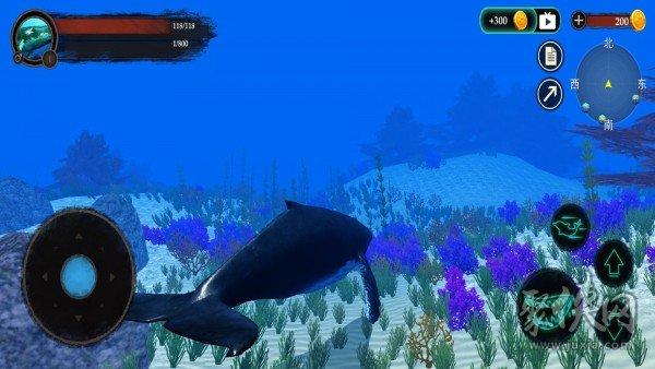 海洋动物世界