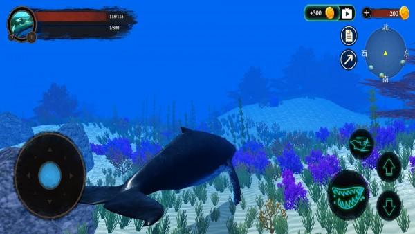海洋动物世界截图