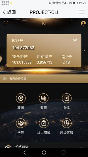 ic国际支付链截图
