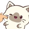 可爱暹罗猫